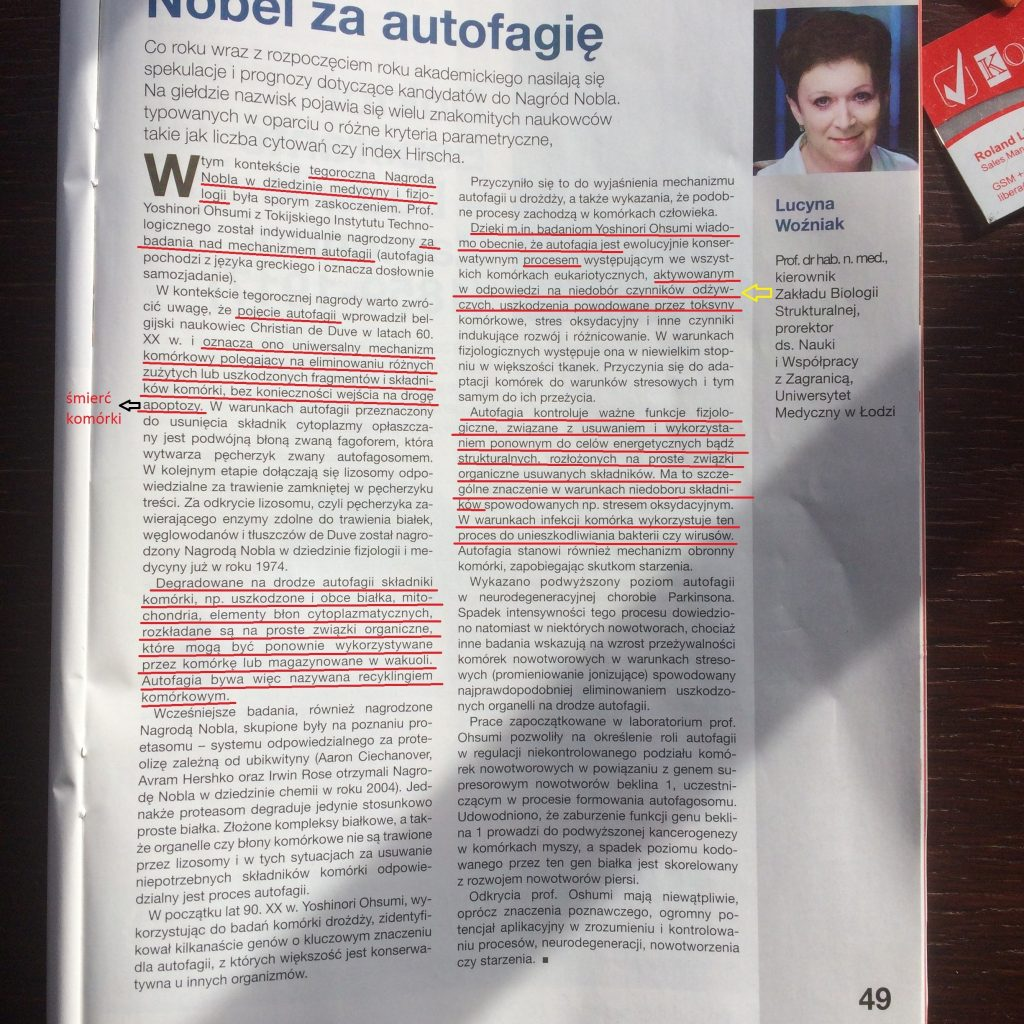 artykuł autofagia